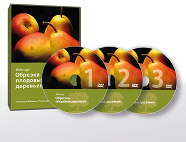 Видеокурс «Обрезка плодовых деревьев» - Евгений Федотов
