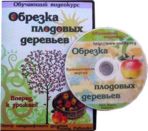 Видеокурс «Обрезка плодовых деревьев» - Николай Рабушко