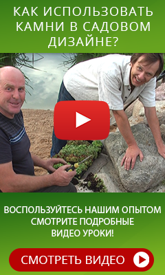 http://www.all-info-products.ru/products/fedotov/kamni.php